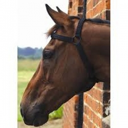 Harpley Magnetic Horse Halter