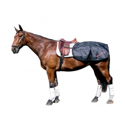 Back on Track Horse Exercise Quarter Sheet