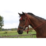 Bodanza Hackamore Rope Bridle and Reins