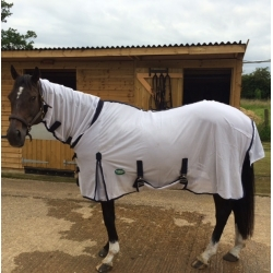 Cameo Mesh Horse Fly Rug And Neck Cover