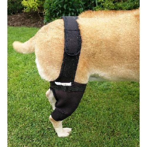 FirstCanine Orthopaedic Dog Hind Knee Brace