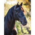 LightRider Leather Dressage Bitless Bridle