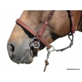 LightRider Leather Bitless Noseband