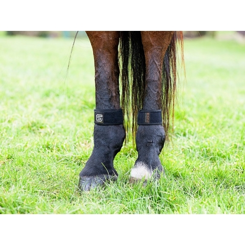 PAIR Equ StreamZ Magnetic Resonance Therapy Horse Fetlock Bands