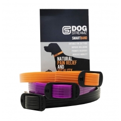 StreamZ Magnetic Resonance Dog Collar
