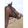 Whinny Plaited Horse Reins With Rein Clips