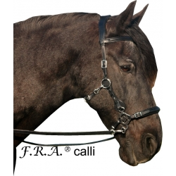 Calli Love Hackamore Bitless Bridle And Reins