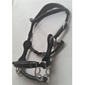 Calli Star Bitless Bridle And Reins