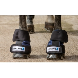 Cryochaps Absolute Horse Ice Boots / Wraps - Pair