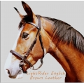LightRider Leather English Bitless Bridle