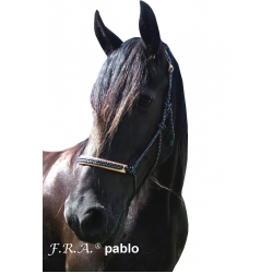Pablo Rope Halter With Leather Nose / Head Protection