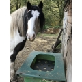 Parallax Hay Saver / Horse Hay Slow Feeder - Small Circle Grill Version