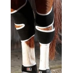 Premier Equine Magnetic Horse Hock Boots - Pair