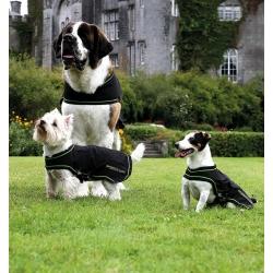 Sportz Vibe Dog Massage Rug