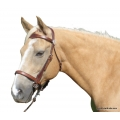 LightRider Bitless Bridles