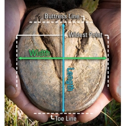 How To Measure A Horse For Hoof Boots